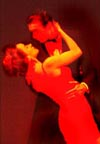 tango in spanish essay Ballroom: the dance that globalization built and will be referred back to later in the essay as to the origins of tango is that it was a dance of spanish.